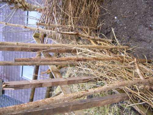 dead hedge2